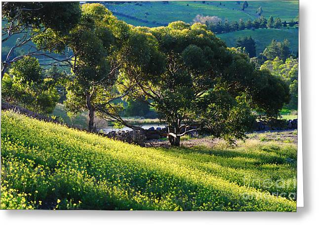 Global Greens Greeting Cards - Springtime Glory With Blue Hills Greeting Card by Georgiana Romanovna