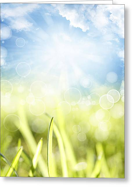 Freshness Photographs Greeting Cards - Springtime Greeting Card by Les Cunliffe