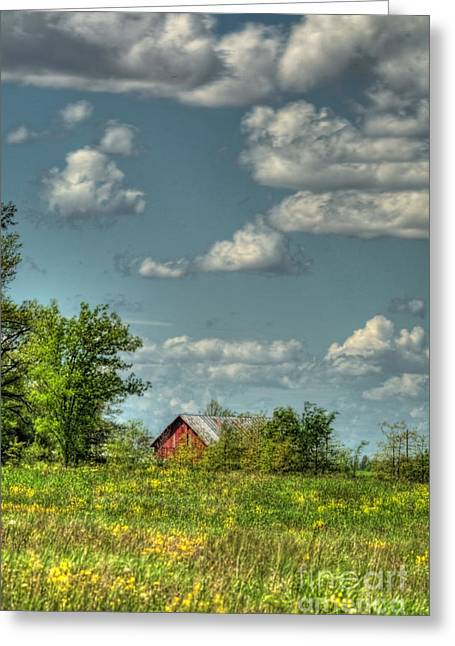 Hdr Photo Greeting Cards - Springtime  Greeting Card by Pamela Baker