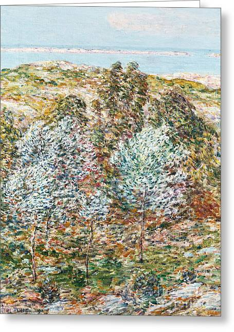 Sea View Greeting Cards - Springtime Vision Greeting Card by Childe Hassam