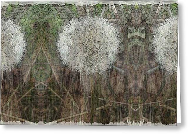Dandilion Greeting Cards - Springtimes Three Amigos Greeting Card by Tim Allen