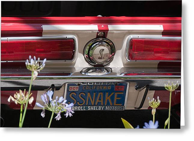 Carroll Shelby Greeting Cards - SSnake Greeting Card by Peggy Zachariou