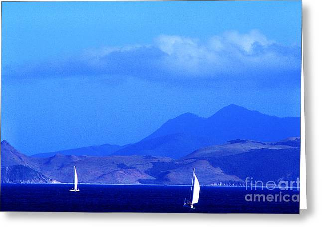 Boats In Harbor Greeting Cards - St Kitts Sailing Greeting Card by Thomas R Fletcher