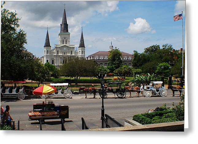 Lucky Dogs Greeting Cards - St. Louis Cathedral Greeting Card by Beth  Spayde