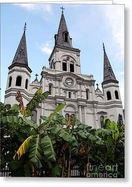 French Quarter Greeting Cards - St Louis Cathedral Rising Above Palms Jackson Square New Orleans Accented Edges Digital Art Greeting Card by Shawn O