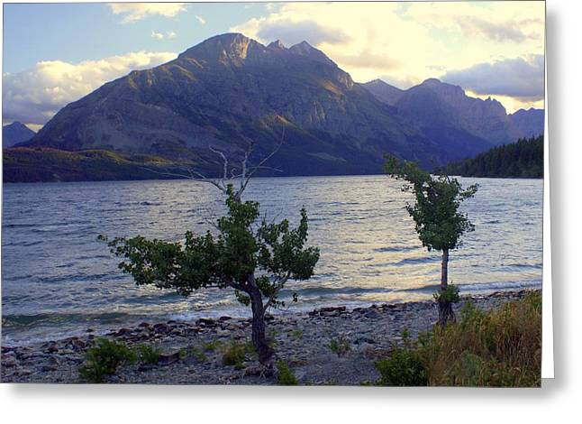 Marty Koch Greeting Cards - St. Mary Lake Greeting Card by Marty Koch
