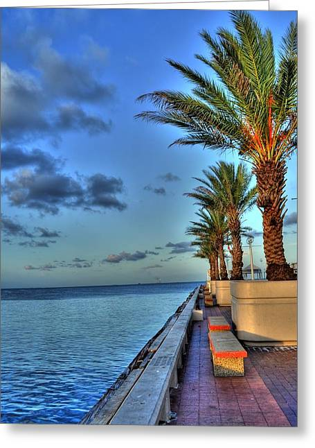 St Petersburg Florida Greeting Cards - St. Petersburg Pier Tampa Bay Greeting Card by Timothy Lowry