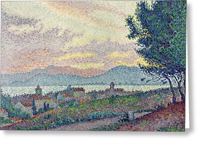 Pointillist Greeting Cards - St Tropez Pinewood Greeting Card by Paul Signac