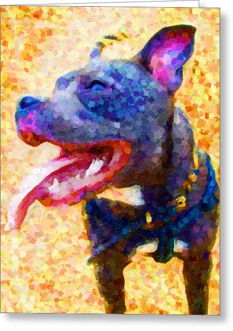 Bull Terrier Greeting Cards - Staffordshire Bull Terrier in Oil Greeting Card by Michael Tompsett