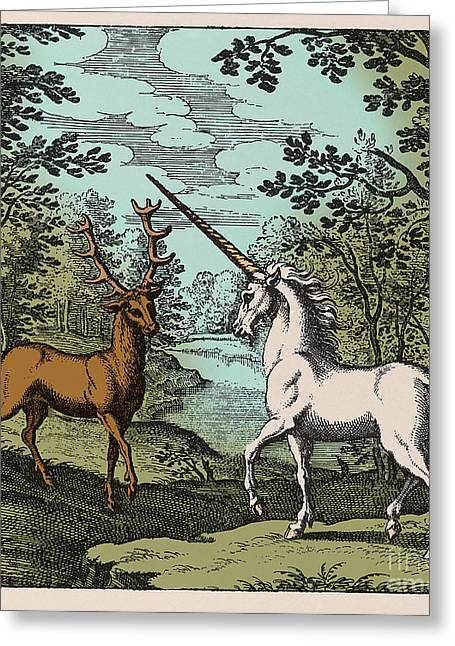 Black Unicorn Greeting Cards - Stag And Unicorn 18th Century Greeting Card by Science Source