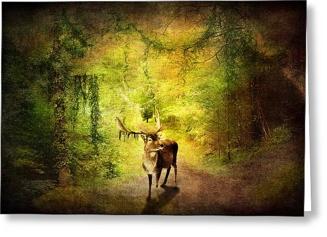 Summer Scene Mixed Media Greeting Cards - Stag Greeting Card by Svetlana Sewell