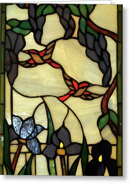 Colorful Photos Glass Art Greeting Cards - Stained Glass Humming Bird Vertical Window Greeting Card by Thomas Woolworth