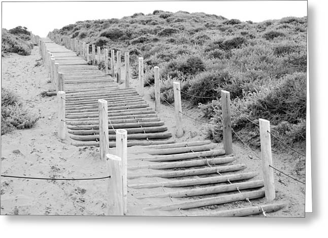 Shane Kelly Greeting Cards - Stairs at Baker Beach Greeting Card by Shane Kelly
