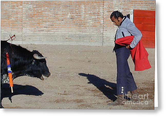 San Miguel De Allende Greeting Cards - Stand Off in Bullfight Greeting Card by Judee Stalmack