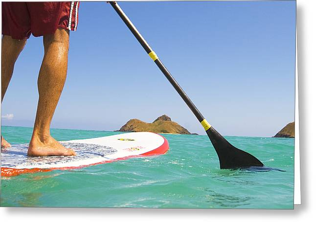 Surfing Art Greeting Cards - Stand Up Paddling Greeting Card by Dana Edmunds - Printscapes