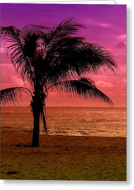 Point Pleasant Greeting Cards - Standing - Jersey Shore Greeting Card by Angie Tirado