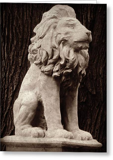 Gargoyle Lion Greeting Cards - Standing Guard Greeting Card by Brenda Conrad