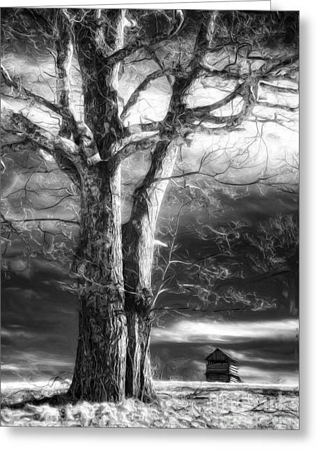 Standing Guard II Greeting Card by Dan Carmichael