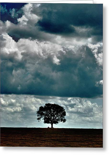 Landscape. Scenic Digital Art Greeting Cards - Standing Guard Over a Fallen Comrade Greeting Card by Sean Holmquist