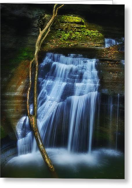 Buttermilk Falls Greeting Cards - Standing In Motion Greeting Card by Evelina Kremsdorf
