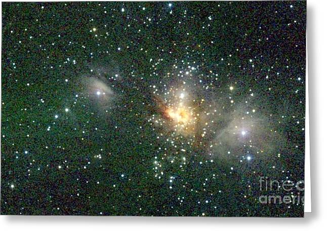 Stellar Formation Greeting Cards - Star Forming Region Greeting Card by 2MASS project / NASA