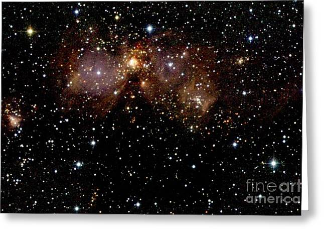 Stellar Evolution Greeting Cards - Star Forming Regions Greeting Card by 2MASS project / NASA