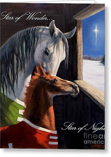 Equine Greeting Cards - Star of Wonder Greeting Card by Jeanne Newton Schoborg