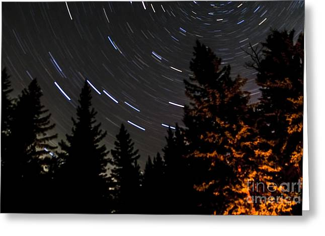 Rotation Greeting Cards - Star Trails Above Spruce Tree Line Greeting Card by Darcy Michaelchuk