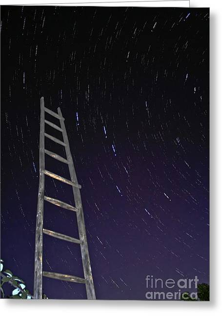 Wooden Stairs Greeting Cards - Star Trails Framworked By A Wooden Greeting Card by Miguel Claro