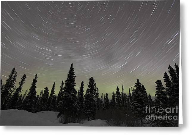 Northern Polar Lights Greeting Cards - Star Trails, Milky Way And Green Aurora Greeting Card by Yuichi Takasaka