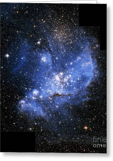 Starbirth Greeting Cards - Starbirth Region Ngc 346, Hst Image Greeting Card by NASA / ESA / Space Telescope Science Institute