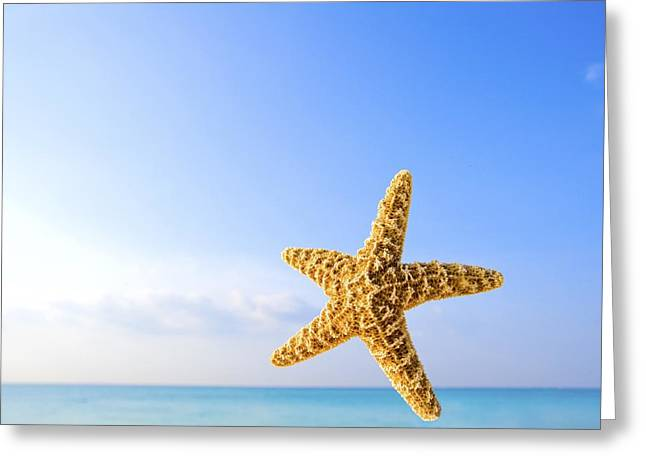 Starfish Greeting Cards - Starfish In Front Of The Ocean Greeting Card by Richard Wear