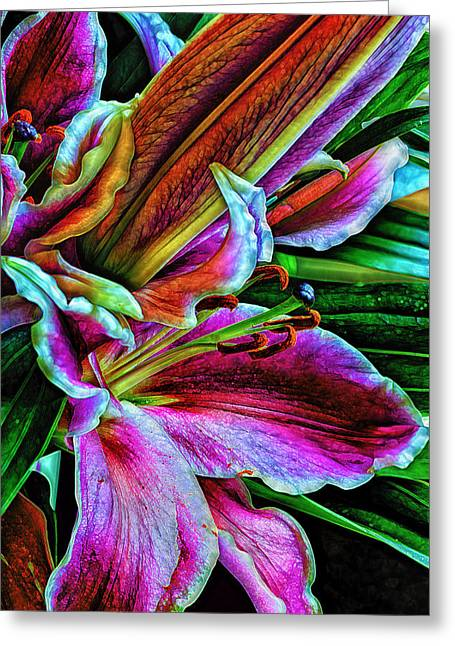 Flower Anthers Greeting Cards - Stargazer Lilies Up Close and Personal Greeting Card by Bill Tiepelman