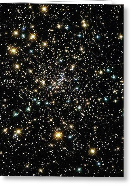 Wfpc2 Greeting Cards - Stars In Globular Cluster Ngc 6397 Greeting Card by Nasaesastscihubble Heritage Team