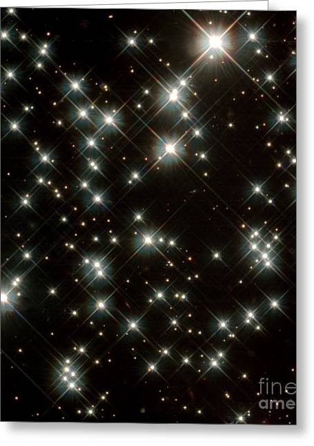 Wfpc2 Greeting Cards - Stars In M4 Globular Cluster Greeting Card by Space Telescope Science Institute / NASA