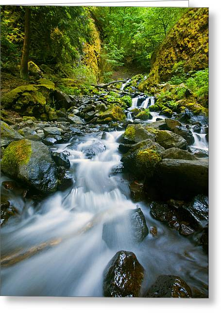 Starvation Greeting Cards - Starvation Creek Falls Greeting Card by Mike  Dawson