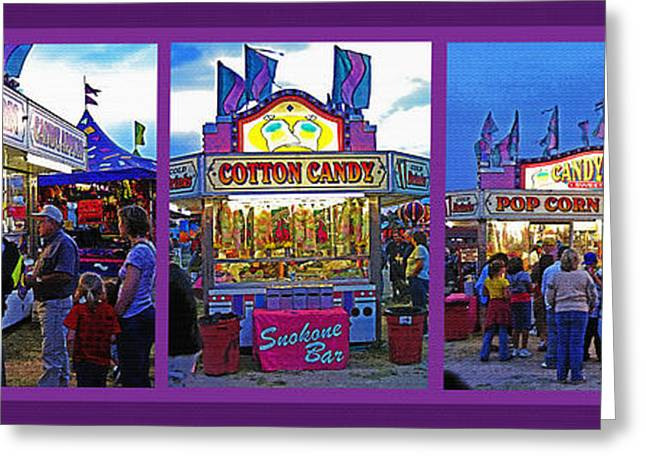 Park Scene Mixed Media Greeting Cards - State Fair Triptych Greeting Card by Steve Ohlsen