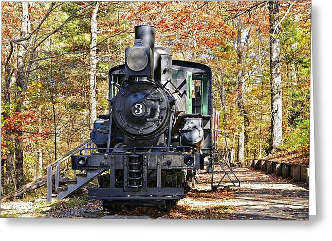 National Past Time Greeting Cards - Steam Locomotive on Display Greeting Card by Susan Leggett