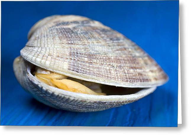 Food Pictures Greeting Cards - Steamed clam Greeting Card by Frank Tschakert