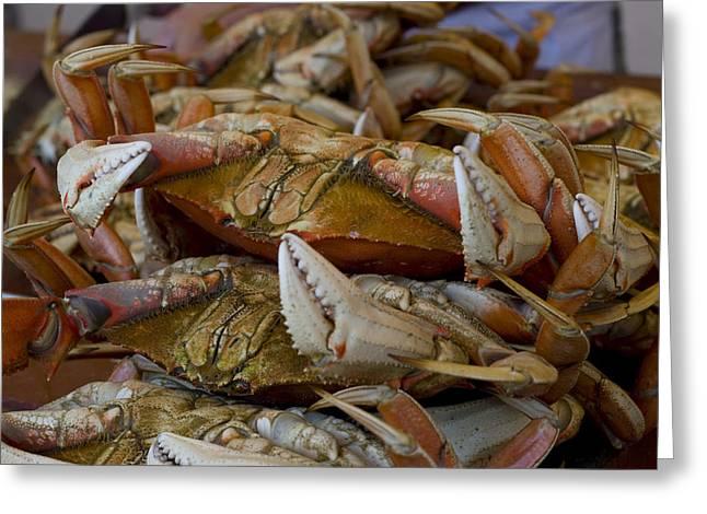 Randy Bayne Greeting Cards - Steamed Crab Greeting Card by Randy Bayne