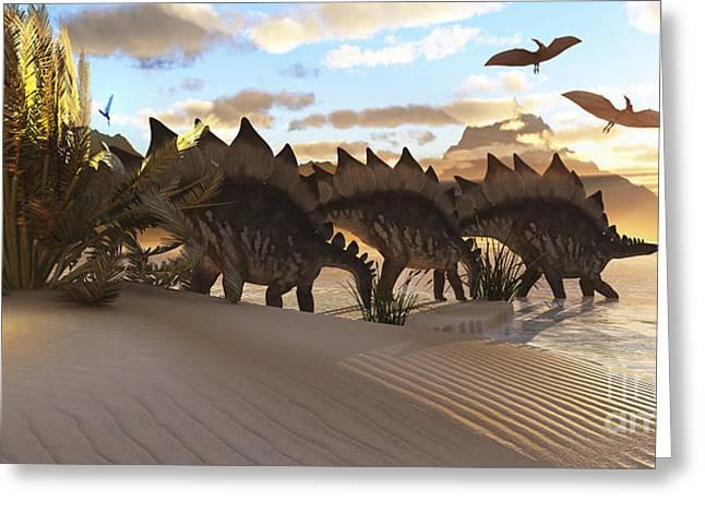 Stegosaurus Greeting Cards - Stegosaurus Dinosaurs Graze Among Greeting Card by Corey Ford