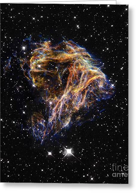 Stellar Remnant Greeting Cards - Stellar Explosion Greeting Card by Science Source