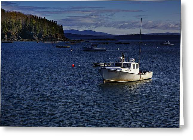 Coastal Maine Greeting Cards - Stephanie Diane Greeting Card by Rick Berk