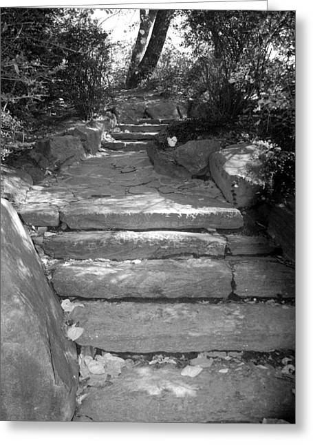Natral Greeting Cards - STEPPING STONES in BLACK AND WHITE Greeting Card by Rob Hans
