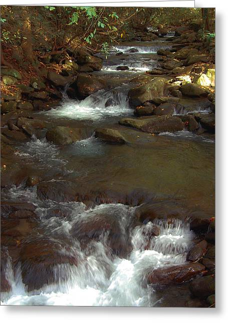Black Rock Yellow Leaves Water Greeting Cards - Stepping Stones of the Mountains Greeting Card by DigiArt Diaries by Vicky B Fuller