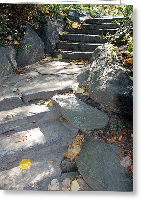 Natral Greeting Cards - Stepping Stones Greeting Card by Rob Hans