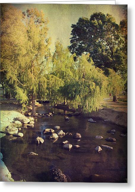 Stepping Stones Greeting Cards - Stepping Stones to My Heart Greeting Card by Laurie Search