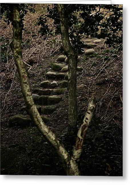 Stone Steps Greeting Cards - Steps Greeting Card by Odd Jeppesen