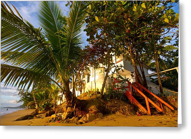 Rincon Beach Greeting Cards - Steps To The Beach Greeting Card by Tim  Fitzwater