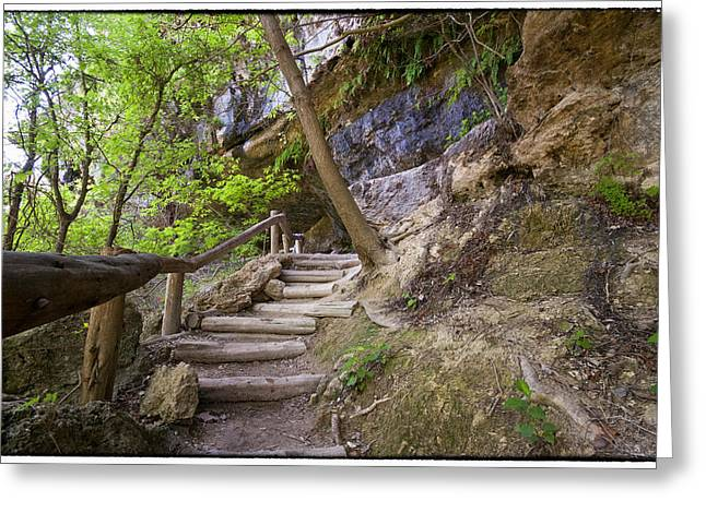 Hamilton Pool Texas Greeting Cards - Steps To The Cave Greeting Card by Lisa  Spencer